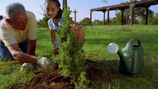 medium shot tilt up pan from watering can to hispanic man and girl planting bush outdoors / new mexico - 大時計点の映像素材/bロール