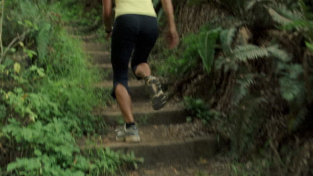vidéos et rushes de medium shot tilt up woman running up steps on forest trail/ california - visage caché