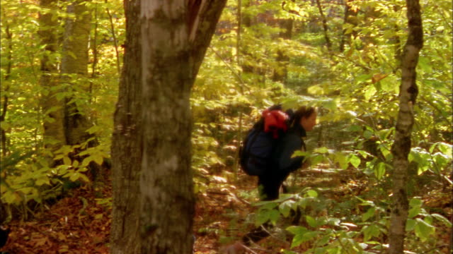 medium shot tracking shot couple w/backpacks walking through woods - 2004 stock-videos und b-roll-filmmaterial