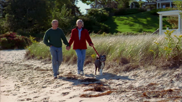 medium shot tracking shot mature couple holding hands and walking w/dog on windy beach - 50 54 jahre stock-videos und b-roll-filmmaterial