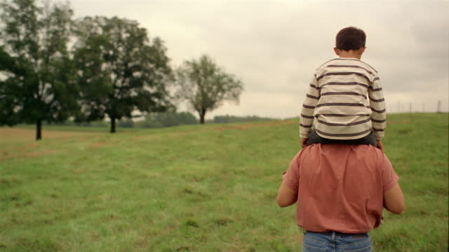 medium shot tracking shot rear view of father putting son shoulders and walking through field / boy looking side to side - 肩に乗せる点の映像素材/bロール