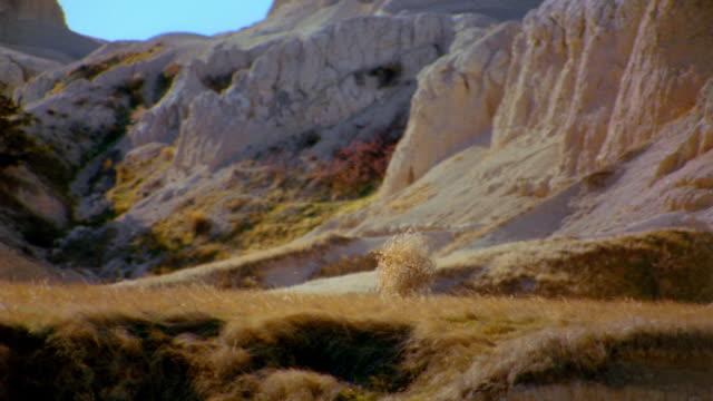 Medium shot tracking shot tumbleweed rolling / cliffs in background