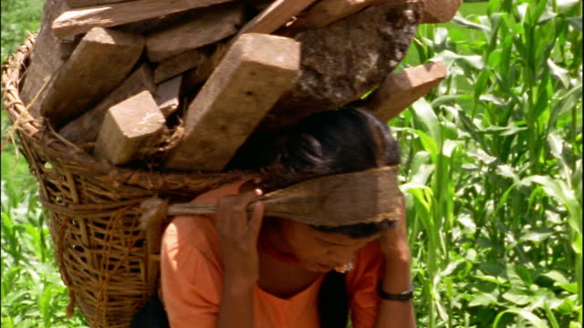 medium shot tracking shot woman carrying large basket full of wood uphill / emptying it onto large pile / nepal - korb stock-videos und b-roll-filmmaterial