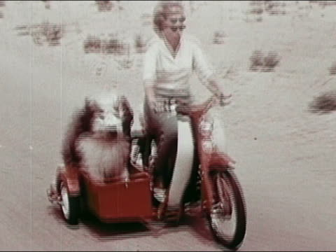1963 medium shot tracking shot woman riding motorbike in desert with dog in sidecar - sidecar stock videos & royalty-free footage