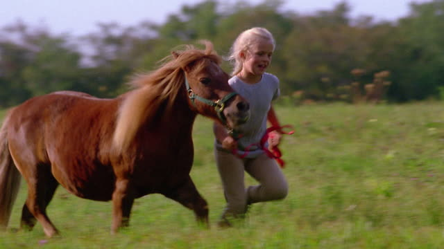 medium shot tracking shot young girl running with pony on field / vermont - mädchen stock-videos und b-roll-filmmaterial