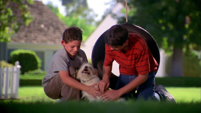 medium shot two boys kneeling w/dog and smiling at cam w/tire swing in background - tire swing stock videos & royalty-free footage