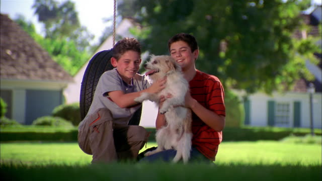 medium shot two boys kneeling w/dog in yard and smiling at cam / tire swing in background - tire swing stock videos & royalty-free footage