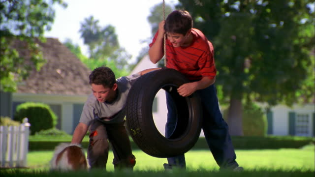 medium shot two boys playing w/dog in yard w/tire swing in background - tire swing stock videos & royalty-free footage