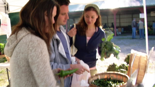 vidéos et rushes de medium shot two women and man shopping for produce/ halcottsville, new york - marché paysan