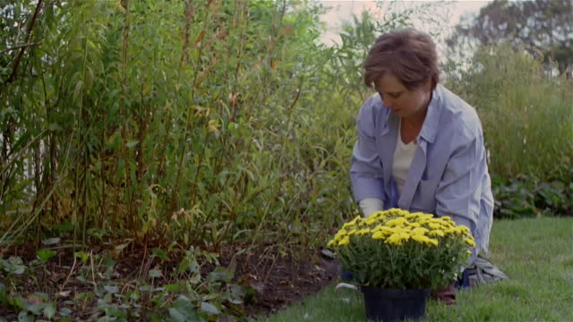 stockvideo's en b-roll-footage met medium shot woman gardening/ solebury, pennsylvania - alleen oudere vrouwen