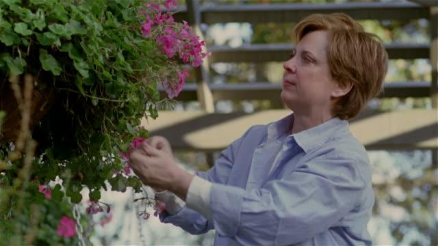 medium shot woman gardening/ solebury, pennsylvania - pruning stock videos & royalty-free footage