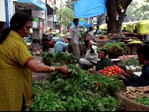 Medium shot woman shopping fresh herbs at produce stand