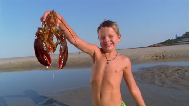 medium shot young boy kneeling on beach and holding lobster - lobster stock videos & royalty-free footage