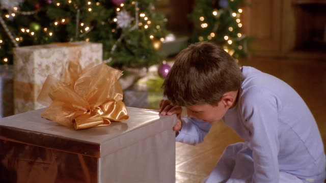 medium shot young boy opening gift with puppy inside / selective focus christmas tree in background - spaniel stock videos and b-roll footage
