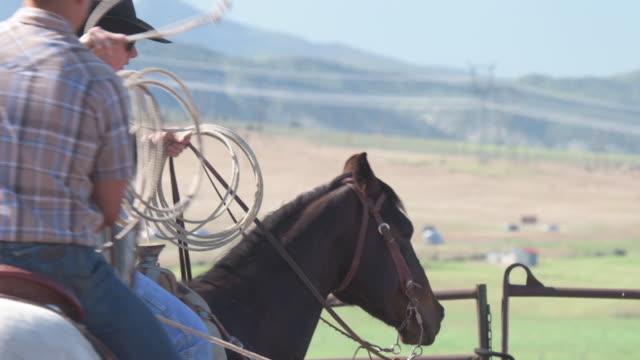 Mittlere Aufnahme junger Cowboy mit dem Lasso Hinterbeine von steer