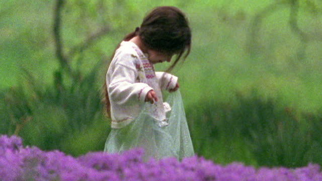 medium shot young girl holding up tulle skirt in field of purple flowers / missouri - tulle stock videos and b-roll footage