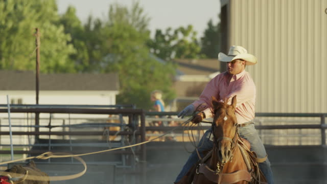 medium slow motion panning shot of man on horse roping bull / lehi, utah, united states - lehi stock videos & royalty-free footage