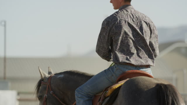 medium slow motion panning shot of man riding horse / lehi, utah, united states - lehi stock videos & royalty-free footage