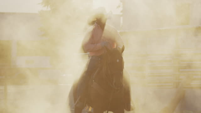 medium slow motion shot of man riding horse in dust cloud / lehi, utah, united states - lehi stock videos & royalty-free footage