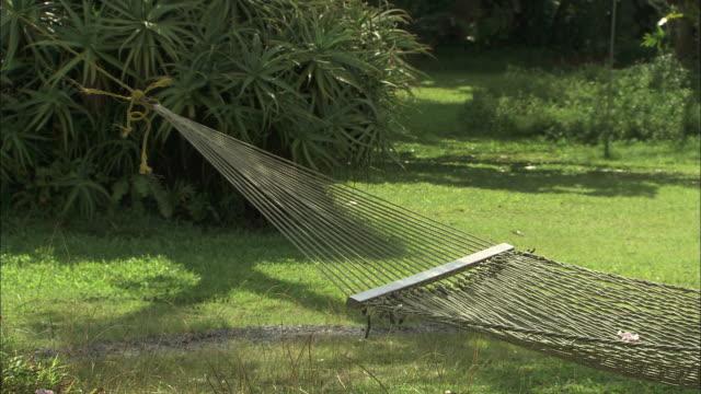 vídeos de stock e filmes b-roll de medium static - a hammock sways as it hangs over a lawn/hawaii, usa - cama de rede