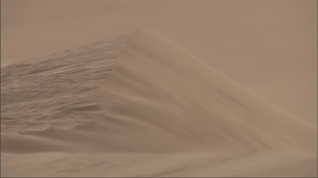 Medium, static - Textures are seen on the side of a sand dune / Egypt