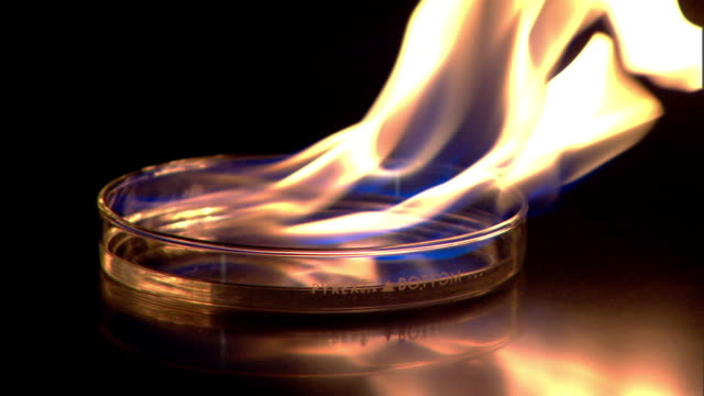 medium static-flames rise from a liquid as it burns in a glass petri dish. / tennesee. usa - piastra petri video stock e b–roll