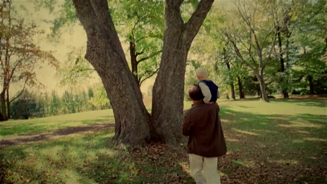 medium tracking shot man carrying young boy on shoulders across lawn to place him between two tree trunks/ man showing boy leaf/ solebury, pennsylvania - 肩車点の映像素材/bロール