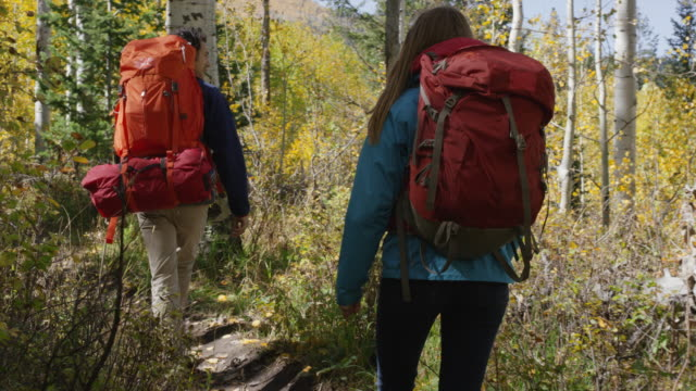 medium tracking shot of couple hiking on forest trail / american fork canyon, utah, united states - american fork canyon bildbanksvideor och videomaterial från bakom kulisserna