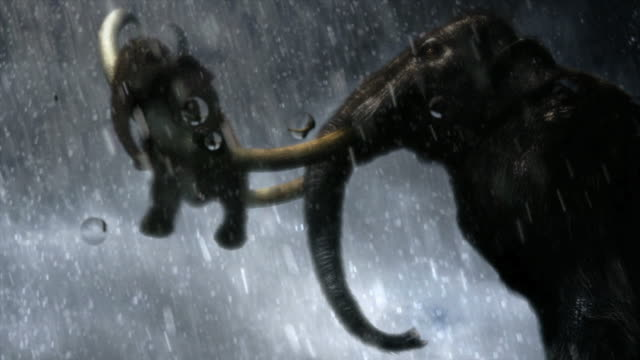 medium tracking-left - a mastodon carries a baby mastodon on its tusks as it rains, then water swells and washes over them. / dallas, texas, usa - 哺乳類点の映像素材/bロール