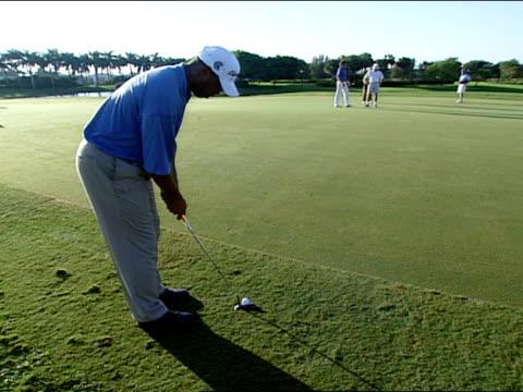 medium - green di golf video stock e b–roll