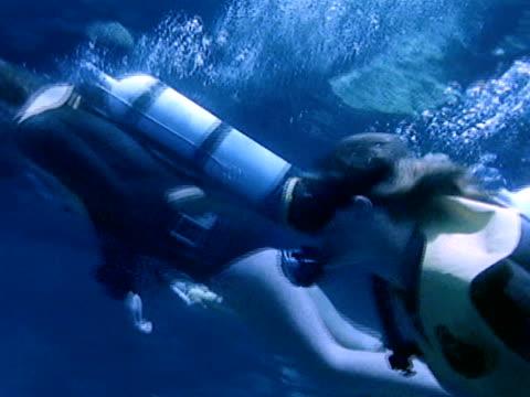 medium - 潜水ボンベ点の映像素材/bロール