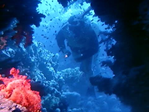 medium - 紅海点の映像素材/bロール