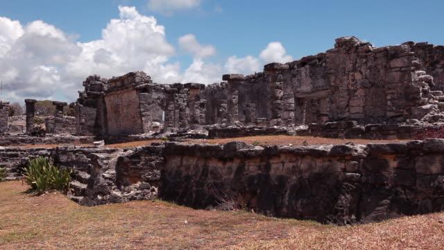 Medium wide, static shot of ancient ruins and a few plants.