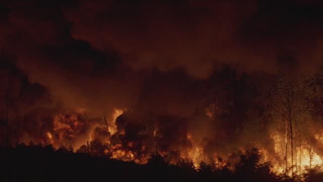 Medium-shot of a firestorm consuming a forest.