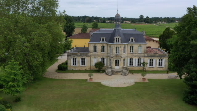 medoc wine region, nouvelle-aquitaine, france - nouvelle aquitaine stock videos and b-roll footage