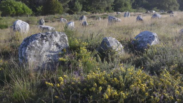 vidéos et rushes de megalithic menhir alignements of carnac - fleur sauvage