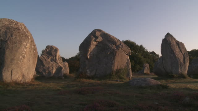 Megalitic Alignement of Kermario - CARNAC