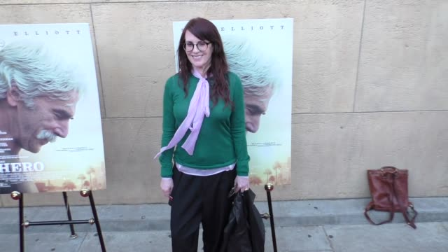 megan mullally at the premiere of the orchard's 'the hero' arrivals on june 05 2017 in hollywood california - megan mullally stock videos and b-roll footage