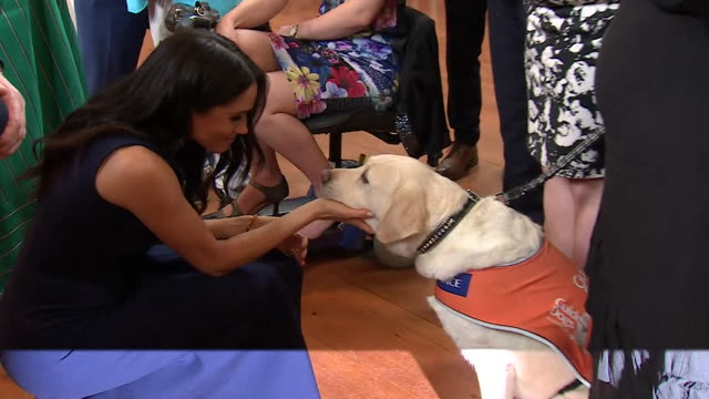Meghan Duchess of Sussex stroking a guide dog on a visit to Melbourne Australia