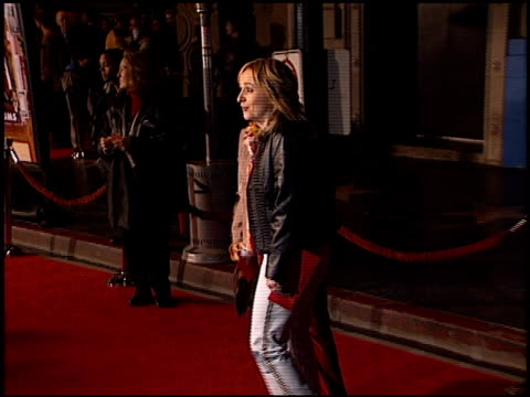 melissa etheridge at the premiere of 'the royal tenenbaums' at the el capitan theatre in hollywood, california on december 6, 2001. - el capitan theatre stock videos & royalty-free footage