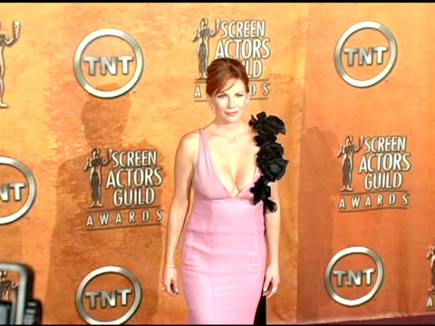melissa gilbert, president of the screen actors guild at the 2005 screen actors guild sag awards photo room at the shrine auditorium in los angeles,... - melissa gilbert stock videos & royalty-free footage