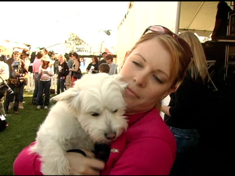 melissa joan hart on her dog copper and on a new leash on life at the 4th annual nuts for mutts event at pierce college in woodland hills, california... - melissa joan hart video stock e b–roll
