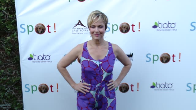 melora hardin at 3rd annual saving spot! dog rescue benefit at tiato on october 26, 2014 in santa monica, california. - melora hardin stock videos & royalty-free footage