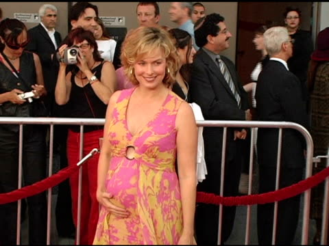 melora hardin at the opening night of 'the ten commandments' at the kodak theatre in hollywood, california on september 27, 2004. - melora hardin stock videos & royalty-free footage