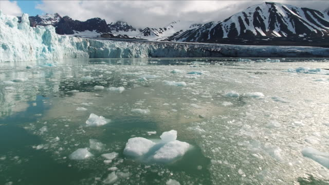 melting arctic ice - antarctica stock videos & royalty-free footage