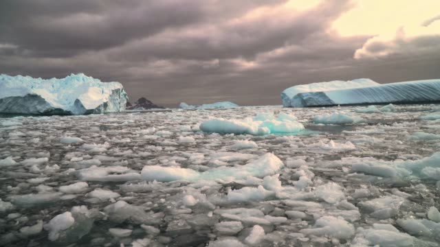 melting iceberg with ice floe in foreground, floating in the sea, antarctica - antarctica ocean stock videos & royalty-free footage