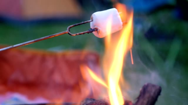 melting marshmallows over a hot fire - marshmallow video stock e b–roll