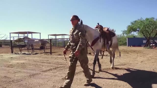 a member of the tucson border patrol search trauma and rescue unit saddles up horse and loads into livestock trailer - sattel stock-videos und b-roll-filmmaterial