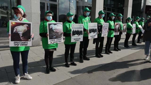 FRA: L214 Animal Protection Association Protests In Front Of Subway France's head Office