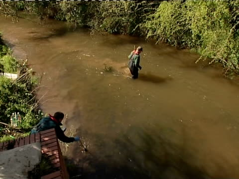 members of the environment agency take measurements in the river ledden - camminare nell'acqua video stock e b–roll